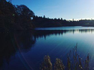 Hillsborough Lake